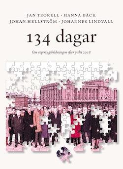 134 dagar : om regeringsbildningen efter valet 2018