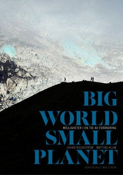 Big world, small planet : abundance within planetary boundaries