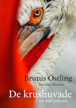 De krushuvade : och andra pelikaner