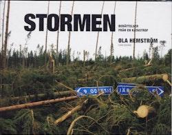 Stormen : berättelser från en katastrof