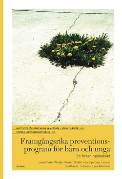 Framgångsrika preventionsprogram för barn och unga : en forskningsöversikt