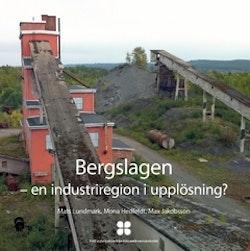Bergslagen : en industriregion i upplösning?