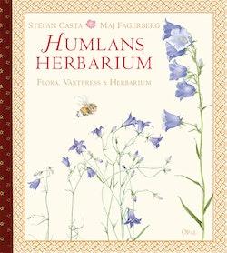 Humlans herbarium - flora, växtpress och herbarium