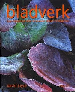 Bladverk : lugn bakgrund eller dramatisk effekt i trädgården