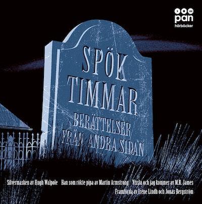 Spöktimmar : Berättelser från andra sidan