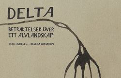Delta : betraktelser över ett älvlandskap