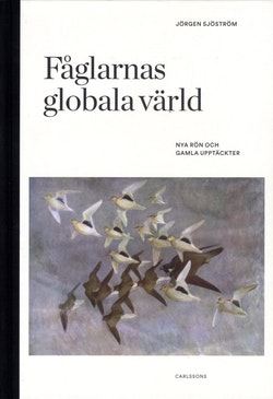 Fåglarnas globala värld : nya rön och gammal kunskap