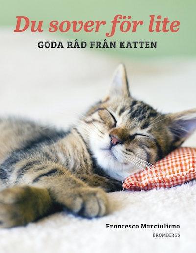 Du sover för lite : goda råd från katten