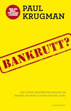 Bankrutt? : den stora vanföreställningen om krisens orsaker och hur den ska lösas
