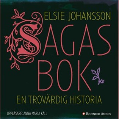 Sagas bok : en trovärdig historia