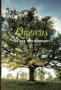 Quercus : The Oak and Diversity