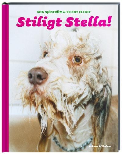 Stiligt Stella!