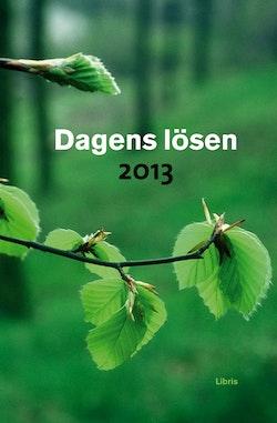 Dagens Lösen 2013