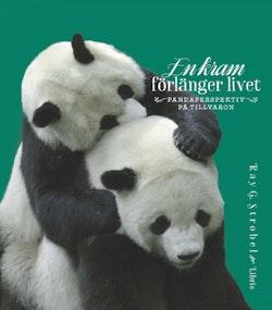 En kram förlänger livet : pandaperspektiv på livet
