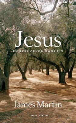 Jesus : en resa genom hans liv