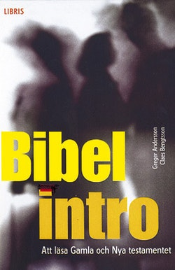 Bibelintro