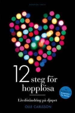 12 steg för hopplösa : livsförändring på djupet