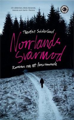 Norrlands svårmod : roman om ett försvinnande