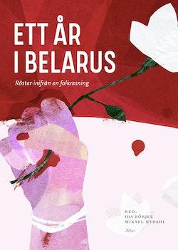 Ett år i Belarus - röster inifrån en revolution