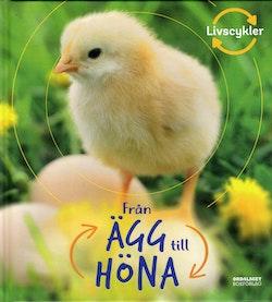 Från ägg till höna