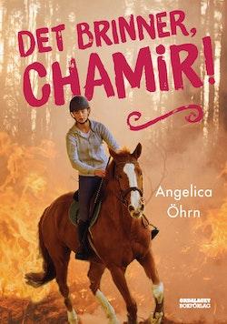 Det brinner, Chamir!