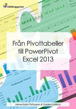 Från Pivottabeller till PowerPivot Excel Pro 2013
