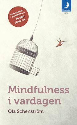 Mindfulness i vardagen : Vägar till medveten närvaro
