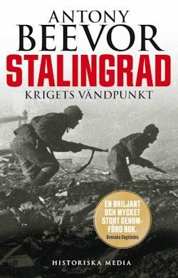 Stalingrad : krigets vändpunkt