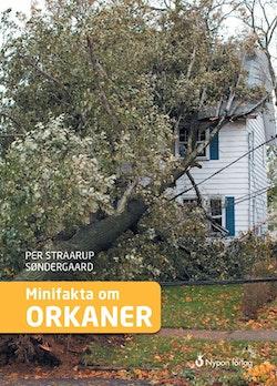Minifakta om orkaner