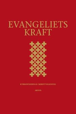 Evangeliets kraft : kyrkofädernas skrifttolkning - utläggningar av epistelläsningarna i 2002 års evangeliebok