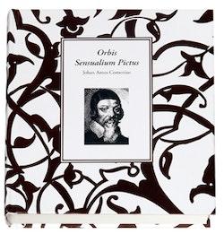 Orbis Sensualium Pictus : den synliga världen