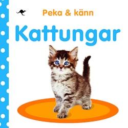 Peka och känn : kattungar