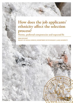 How does the job applicants' ethnicity affect the selection process?