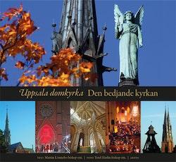 Uppsala domkyrka : den bedjande kyrkan