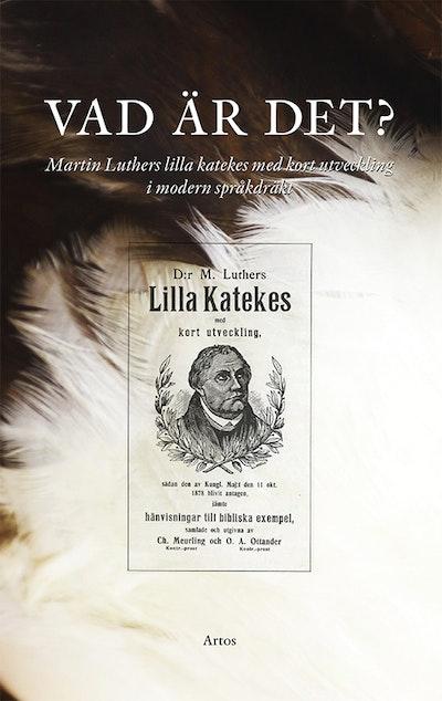 Vad är det? : Martin Luthers lilla katekes med kort utveckling i modern språkdräkt