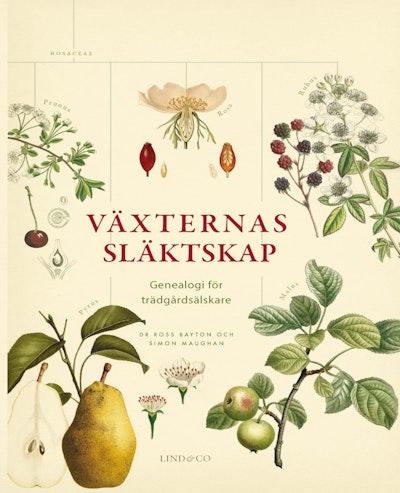 Växternas släktskap : genealogi för trädgårdsälskare