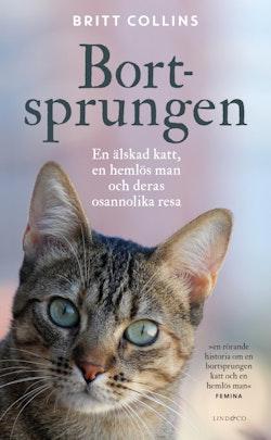 Bortsprungen : en älskad katt, en hemlös man och deras osannolika resa