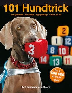 101 hundtrick
