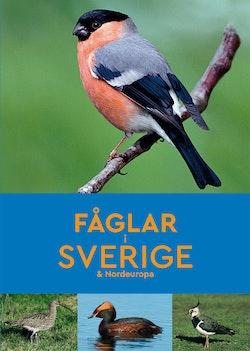 Fåglar i Sverige & Nordeuropa