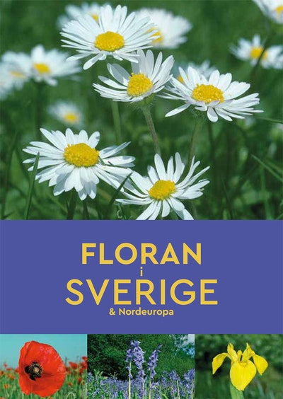 Floran i Sverige & Nordeuropa