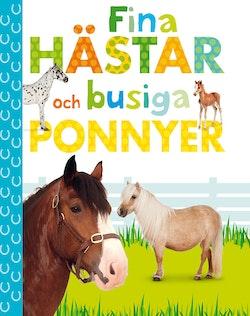Fina hästar och busiga ponnyer