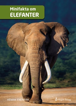 Minifakta om elefanter