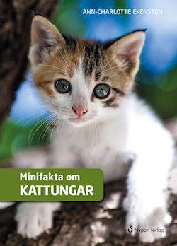Minifakta om kattungar