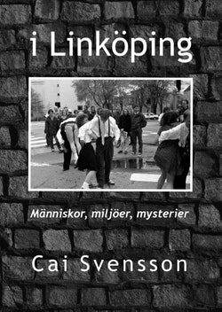 I Linköping : Människor, miljöer, mysterier