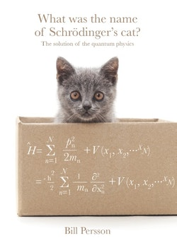 What was the name of Schrödinger's cat? : the solution of the quantum physics