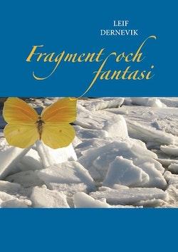 Fragment och fantasi : en samling udda historier