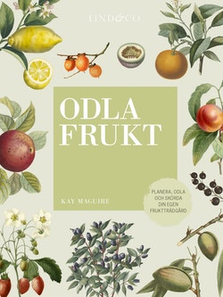 Odla frukt : planera, odla och skörda din egen fruktträdgård