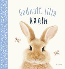 God natt, lilla kanin