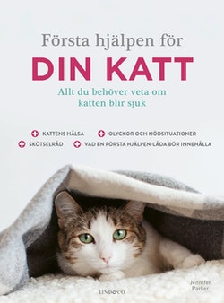Första hjälpen för din katt