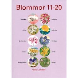 Blommor (11-20)